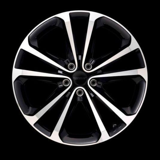 ブラック/ポリッシュは流行のカラーとなっていますが、WS4の場合は単に流行を追って、このカラーに設定したわけではありません。スポーク側面をブラックにすることにより、スポークを細く、そして足元を大きく見せ、タイヤとの一体感を確保させる目的で選んだのがブラック/ポリッシュなのです。